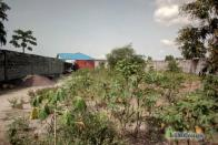 For Sale Plot to Seize - Kinkole  Kinshasa Nsele